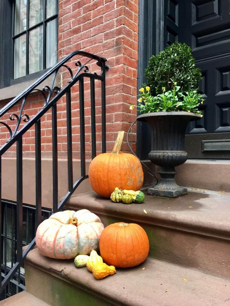 רחובות מקושטים בהלואין ניו יורק EAT- FLY-DRESS